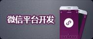 beplay体育ios版微信平台开发